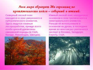 Леса мира образуют два огромных по протяженности пояса – северный и южный. Се