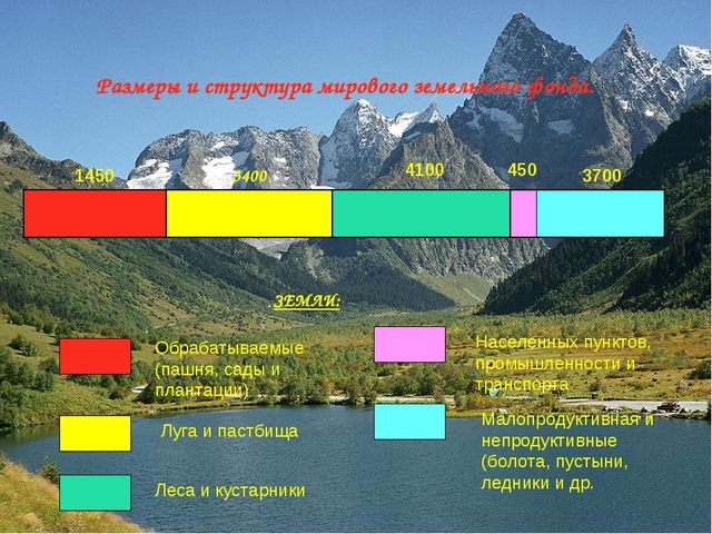 Размеры и структура мирового земельного фонда. 1450 3400 450 4100 3700 ЗЕМЛИ:...