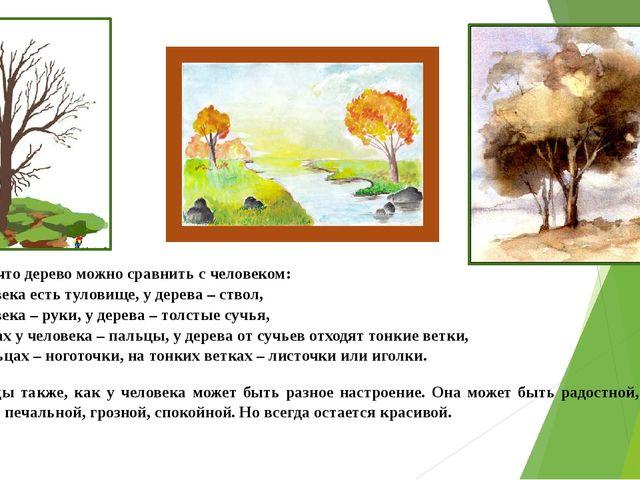 Помните, что дерево можно сравнить с человеком: 1). У человека есть туловище,...
