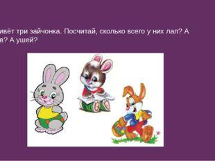 В лесу живёт три зайчонка. Посчитай, сколько всего у них лап? А хвостиков? А