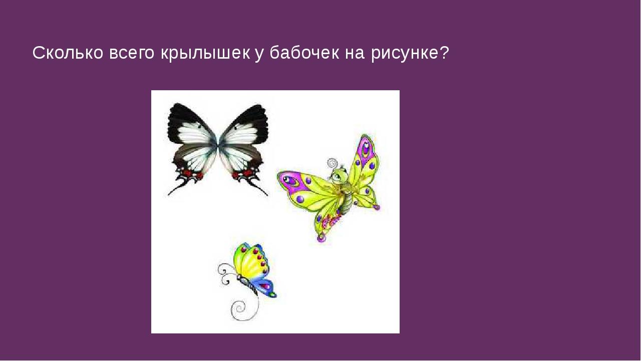 Сколько всего крылышек у бабочек на рисунке? ...