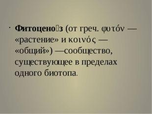 Фитоцено́з (от греч. φυτóν— «растение» и κοινός— «общий»)—с