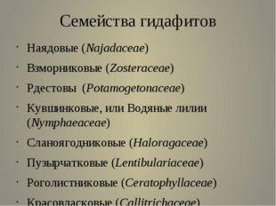 Семейства гидафитов Наядовые (Najadaceae)  Взморниковые (Zosteraceae)  Рде