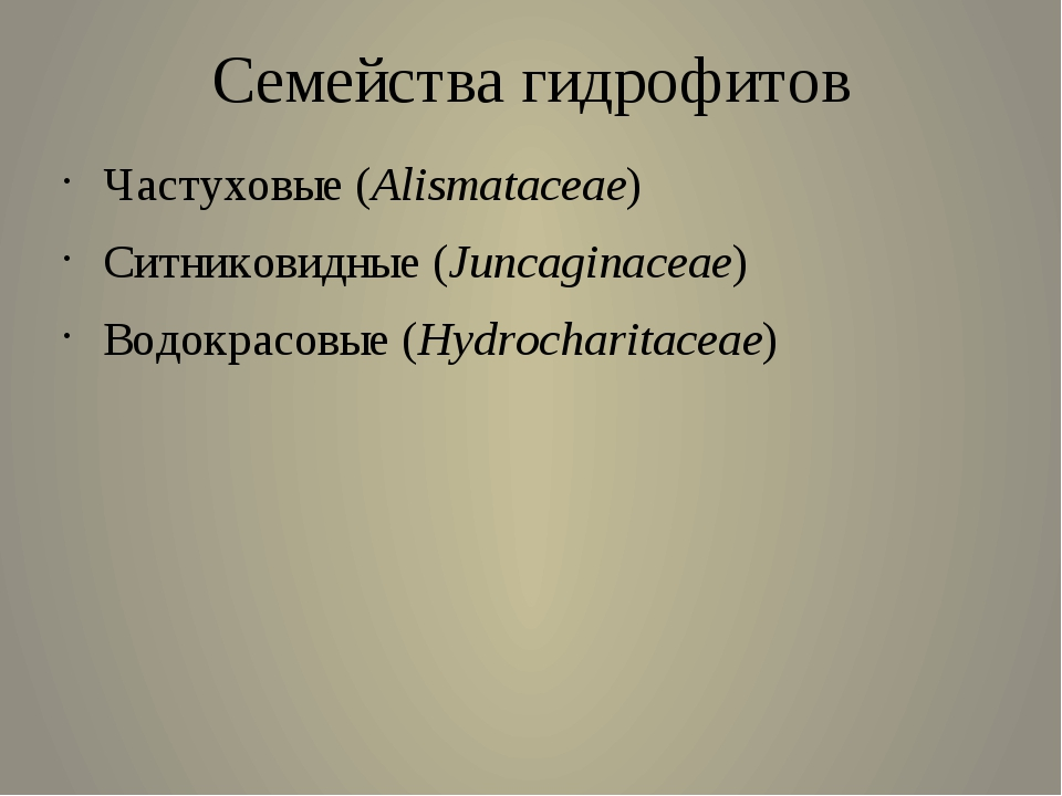 Семейства гидрофитов Частуховые (Alismataceae)  Ситниковидные (Juncaginacea...
