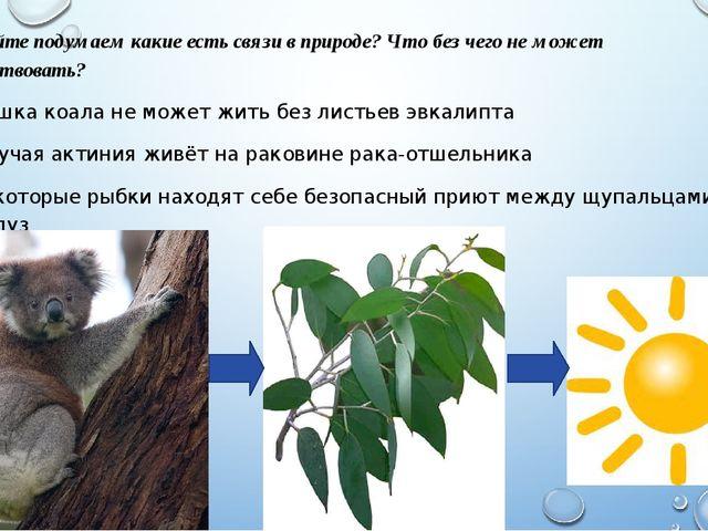 Давайте подумаем какие есть связи в природе? Что без чего не может существова...