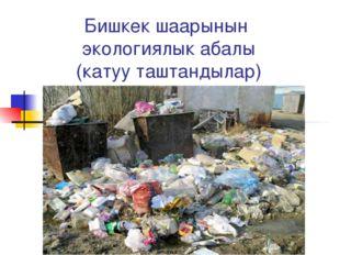 Бишкек шаарынын экологиялык абалы (катуу таштандылар)
