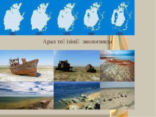 Арал теңізінің экологиясы
