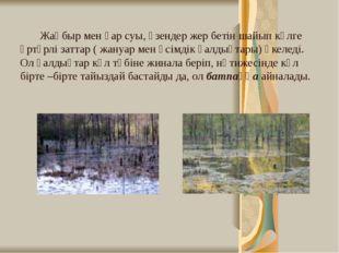 Жаңбыр мен қар суы, өзендер жер бетін шайып көлге әртүрлі заттар ( жануар ме