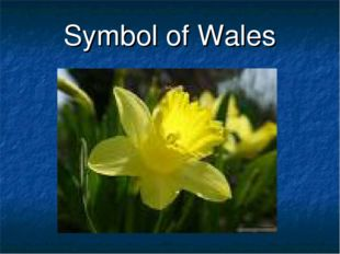 Symbol of Wales