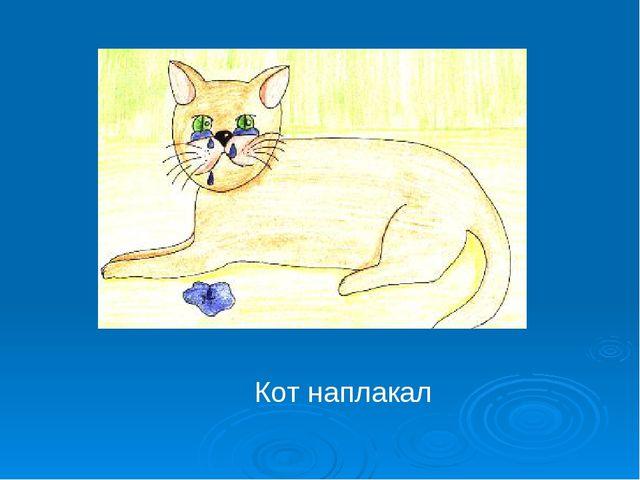 Кот наплакал