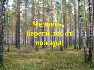 Человек, береги лес от пожара!