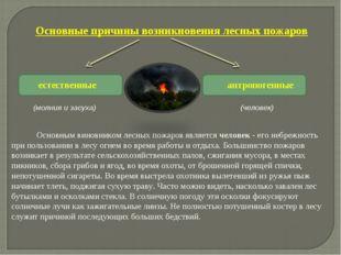 естественные антропогенные (человек) (молния и засуха)  Основным в