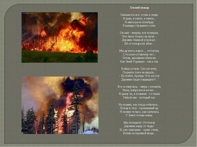 Лесной пожар Сергей Газин Смешалось всё: огонь и люди, И дым, и пепел, и земл...