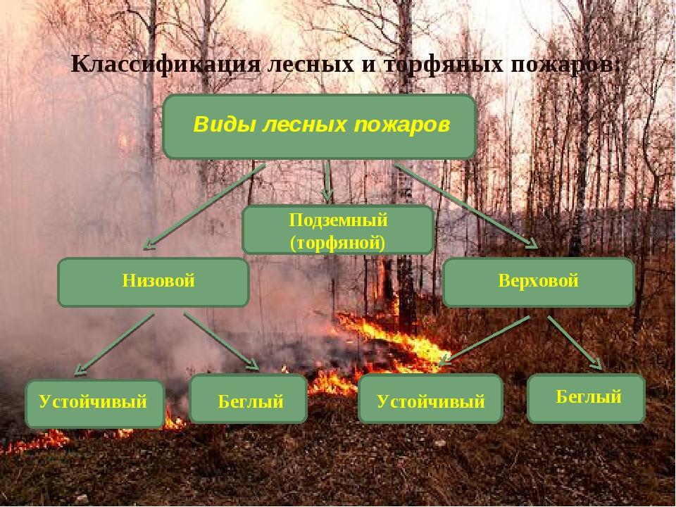 Подземный (торфяной) Классификация лесных и торфяных пожаров: Виды лесных пож...