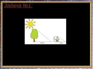 Задача №1: Длина тени дерева равна 10м, а длина тени человека, рост которого