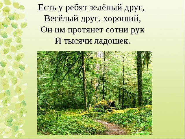 Есть у ребят зелёный друг, Весёлый друг, хороший, Он им протянет сотни рук И...