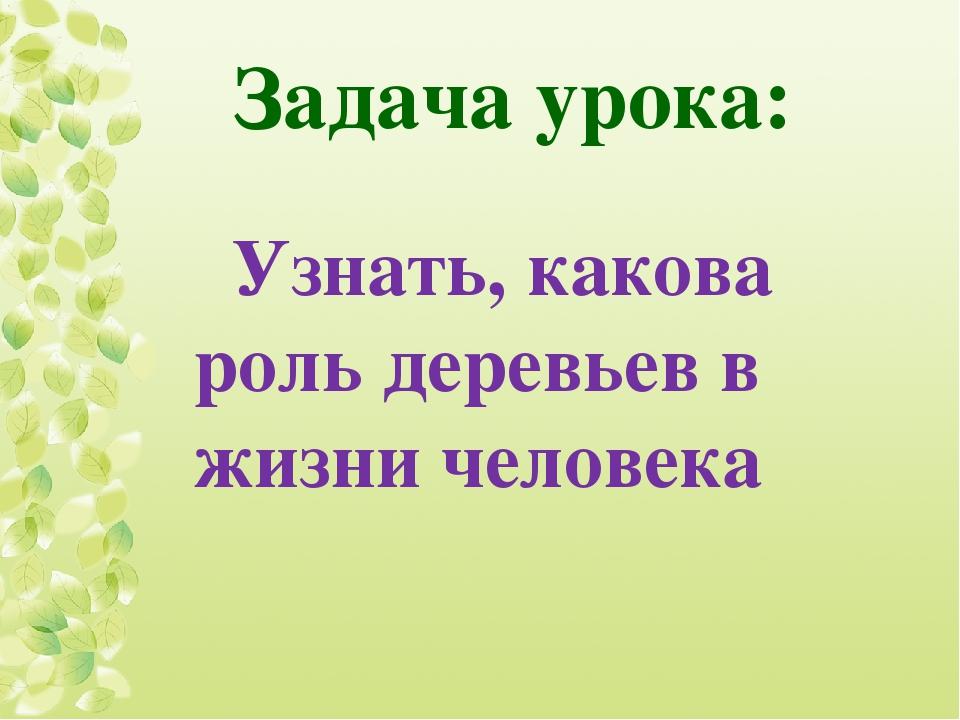 Задача урока: Узнать, какова роль деревьев в жизни человека