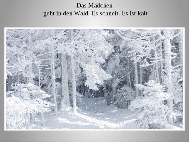 Das Mädchen geht in den Wald. Es schneit. Es ist kalt