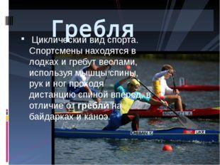 Циклический вид спорта. Спортсмены находятся в лодках и гребут веслами, испо