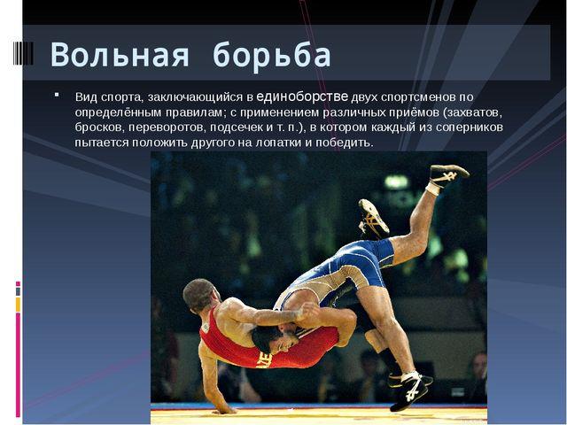 Вид спорта, заключающийся в единоборстве двух спортсменов по определённым пра...
