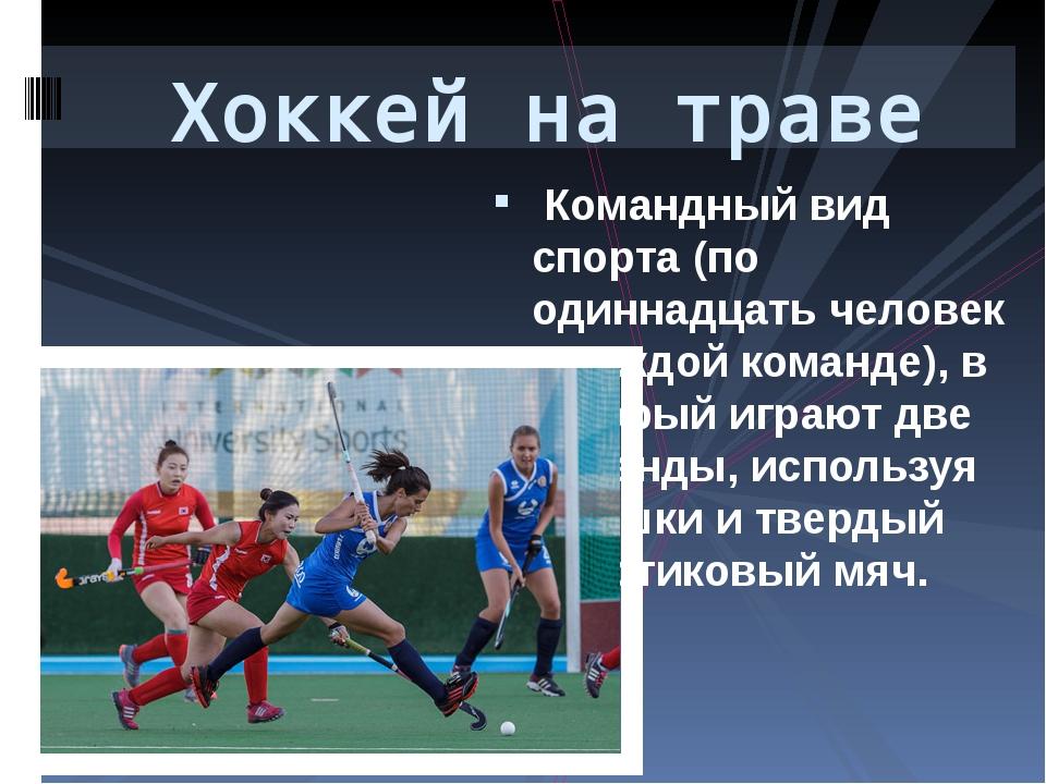 Командный вид спорта (по одиннадцать человек в каждой команде), в который иг...