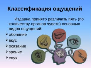Классификация ощущений Издавна принято различать пять (по количеству органов