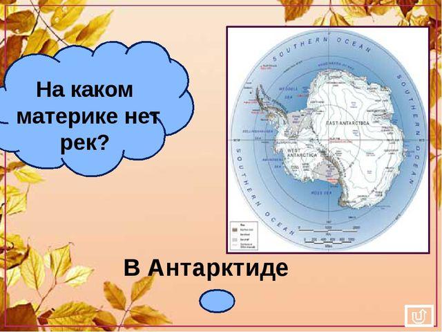 В Антарктиде На каком материке нет рек?