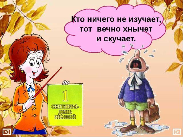 Кто ничего не изучает, тот вечно хнычет и скучает.