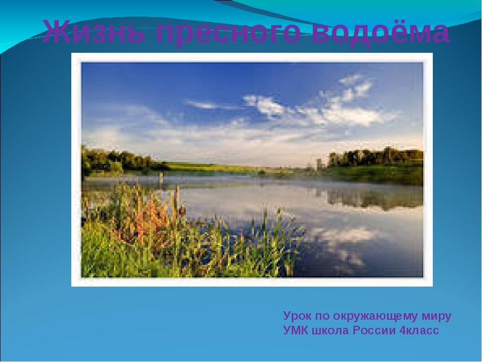 Жизнь пресного водоёма Урок по окружающему миру УМК школа России 4класс