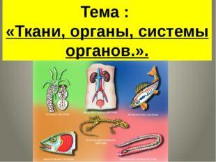 Тема : «Ткани, органы, системы органов.».