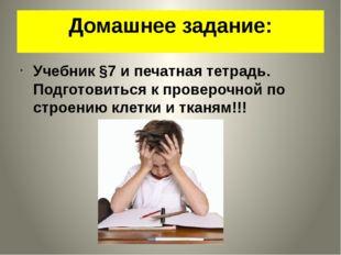 Домашнее задание: Учебник §7 и печатная тетрадь. Подготовиться к проверочной