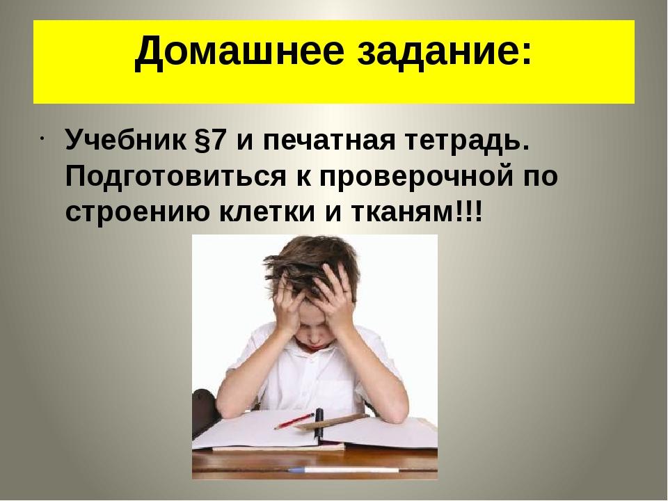 Домашнее задание: Учебник §7 и печатная тетрадь. Подготовиться к проверочной...