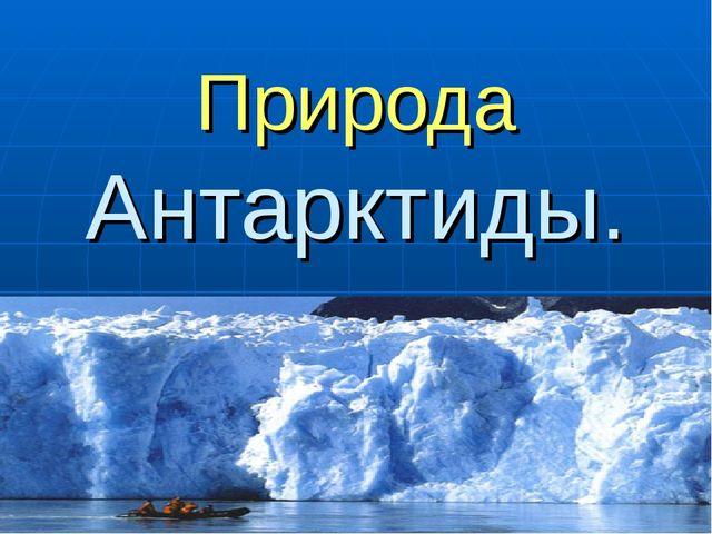 Природа Антарктиды.