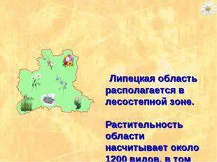 Липецкая область располагается в лесостепной зоне. Растительность области на