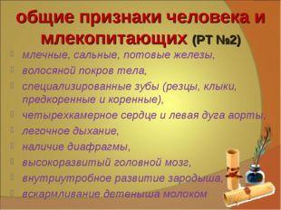 общие признаки человека и млекопитающих (РТ №2) млечные, сальные, потовые жел