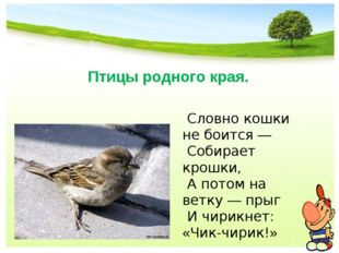 Птицы родного края. Словно кошки не боится — Собирает крошки, А потом на ветк