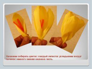Начинаем собирать цветок: каждый лепесток укладываем вокруг тычинок немного с