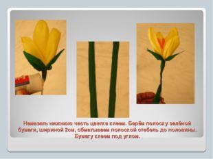 Намазать нижнюю часть цветка клеем. Берём полоску зелёной бумаги, шириной 2см