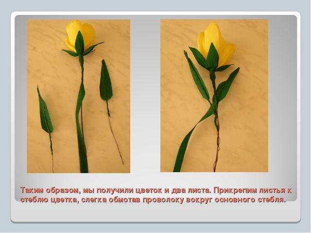 Таким образом, мы получили цветок и два листа. Прикрепим листья к стеблю цвет...