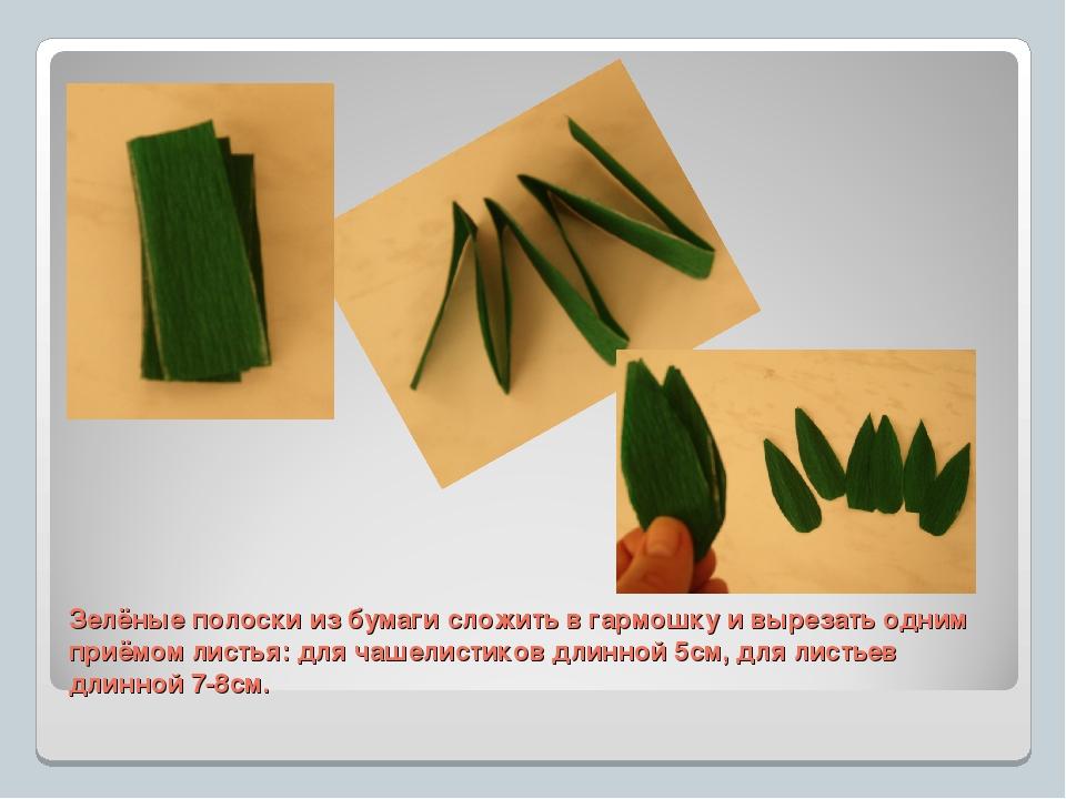 Зелёные полоски из бумаги сложить в гармошку и вырезать одним приёмом листья:...