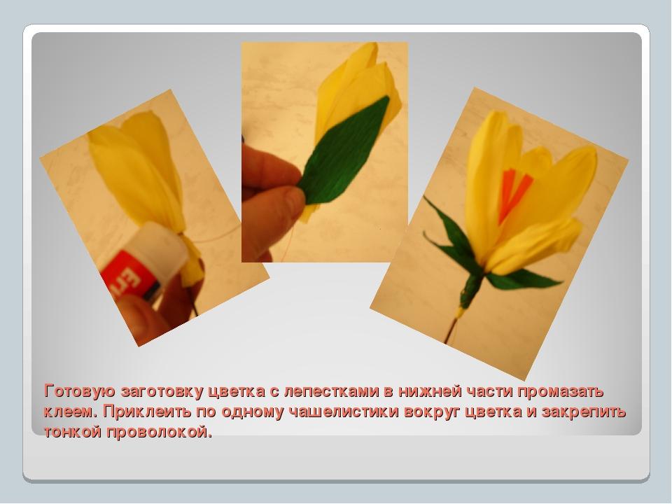 Готовую заготовку цветка с лепестками в нижней части промазать клеем. Приклеи...