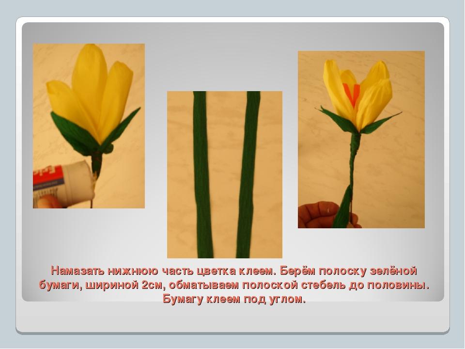Намазать нижнюю часть цветка клеем. Берём полоску зелёной бумаги, шириной 2см...