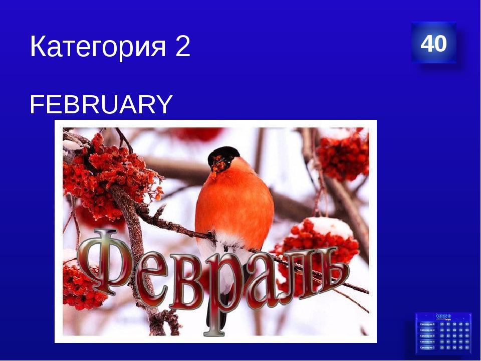 Категория 2 FEBRUARY