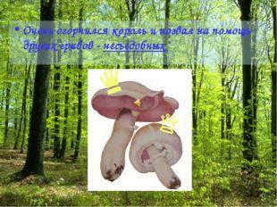 Очень огорчился король и позвал на помощь других грибов - несъедобных
