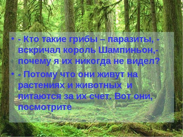 - Кто такие грибы – паразиты, - вскричал король Шампиньон,- почему я их никог...