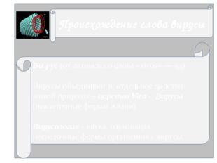 Ви́рус (от латинского слова «virus» — яд). Вирусы объединяют в отдельное цар