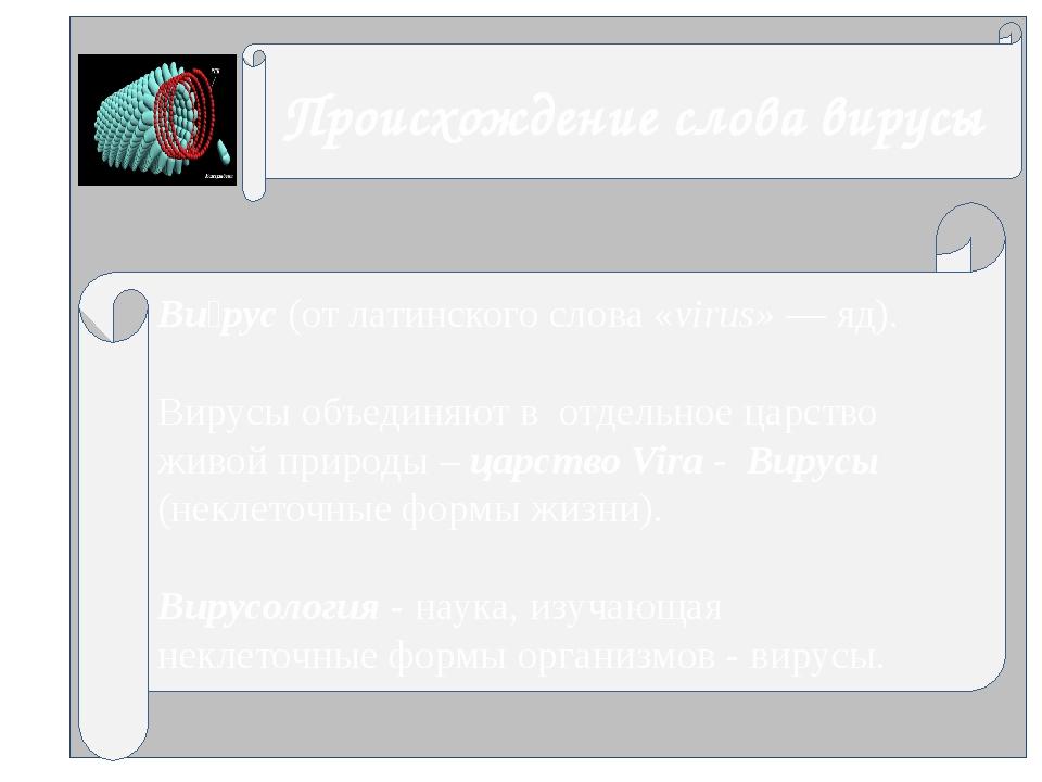 Ви́рус (от латинского слова «virus» — яд). Вирусы объединяют в отдельное цар...
