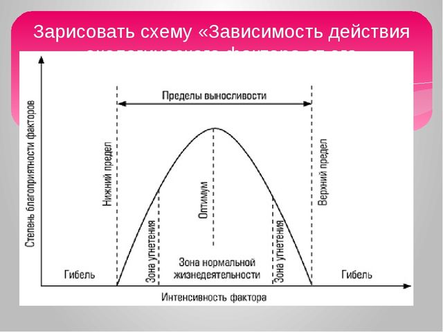 Зарисовать схему «Зависимость действия экологического фактора от его интенсив...