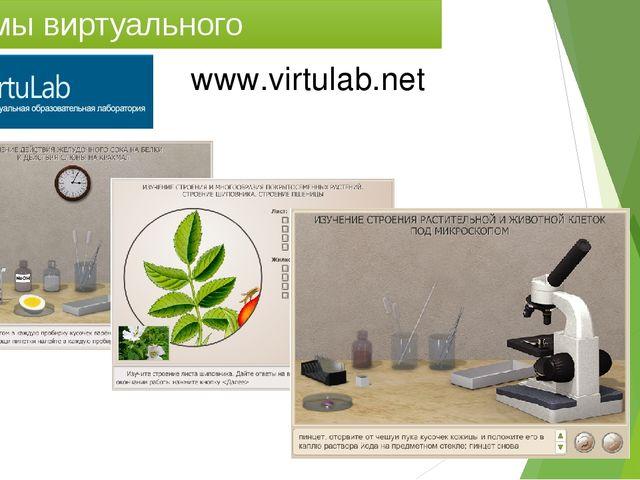Системы виртуального эксперимента www.virtulab.net
