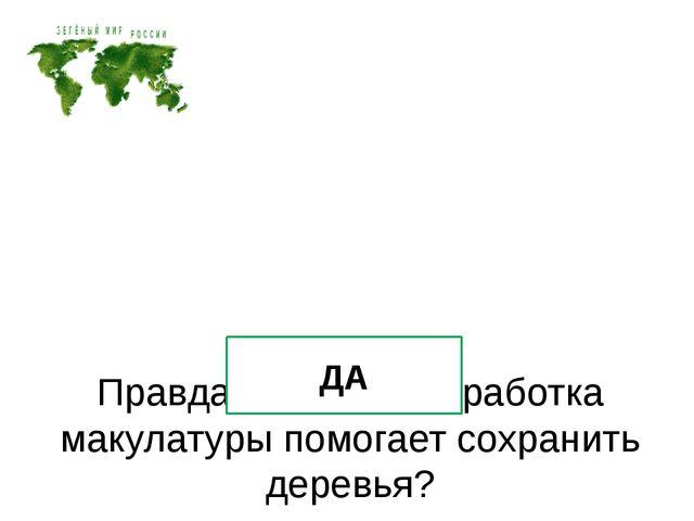Правда ли, что переработка макулатуры помогает сохранить деревья? ДА
